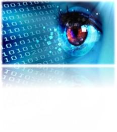 Service SATIS surveillance